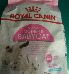 Royal Canin, Осталось 8 пачек !!!