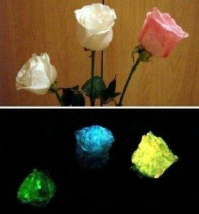 Светящийся био-гель для цветов