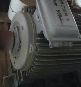 Электродвигатель МО 250М-В 55 кВт 980 об/мин