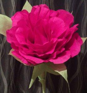 Ростовый гигантский цветок