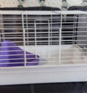 клетка для свинок и кроликов