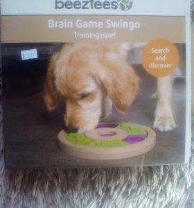 Интеллектуальная игра для собак