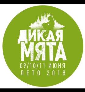 Фестиваль Дикая мята, лето 2018