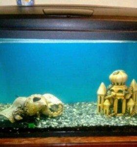 аквариум на 120 л.