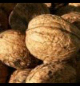 Приму грецкие орехи