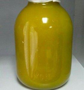 Мёд из подсолнечника