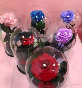 Роза в стеклянной колбе +подарок