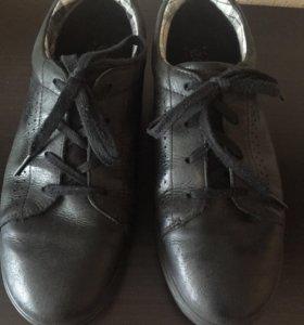 Ботинки мужские Ecco
