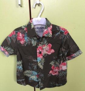 Рубашка 18 м