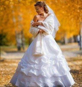 Видеооператор фотограф на свадьбу выписку юбилей