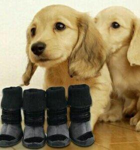 Продам новые батиночки на собаку, размер 3