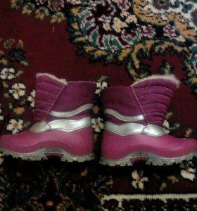 Обувь фирма зебра