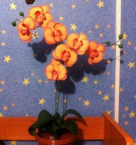 Орхидеи из фоамирана в горшочках в наличии