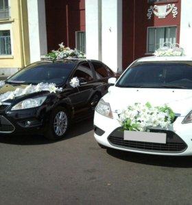 Свадебные авто-кортеж