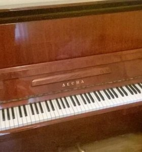 """Фортепиано """"Десна"""""""