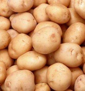 Домашний сортовой картофель