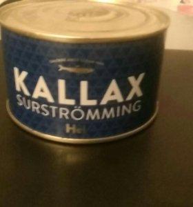 Kallax surstromming