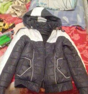 Куртка - осень