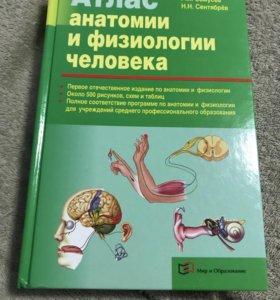 Атлас Анатомия Человека