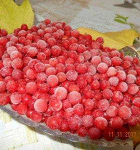 Ягоды красной калины(мороженная)