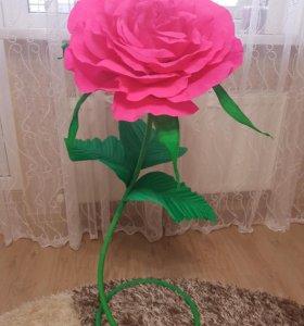 Ростовая роза. 🌹🌹🌹