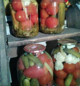Солёные помидоры, огурцы