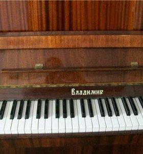 Фортепиано Владимир в дар самовывозом