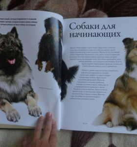 """Книга """"Все породы собак"""""""