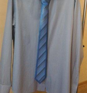 Мужские рубашки и сорочки с длинным рукав 54/182