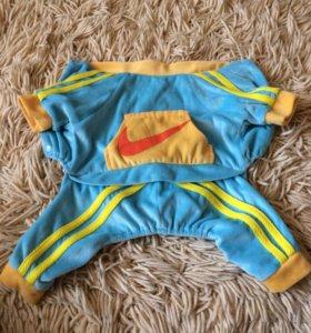 Продам спорт костюм для собаки