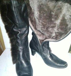 Сапоги натуральная кожа ботфорты женская обувь