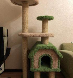 Дом когтеточка