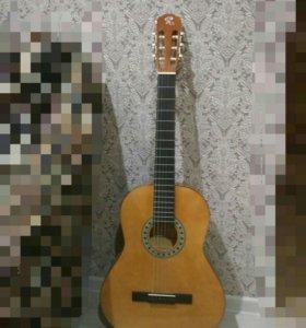гитара+ чехол  *возможен торг*