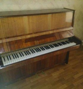 Пианино берёзка
