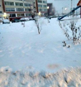 Скинем снег,почистим претдомовую територию!!!