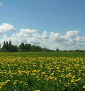 Участок, 11000 сот., сельхоз (снт или днп)