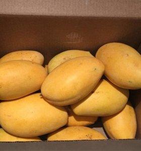 Экзотические фрукты. Манго 5 кг в коробке