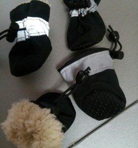Зимняя обувь для собачек