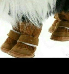 Обувь для собак зимняя, осенняя, весенняя, летня