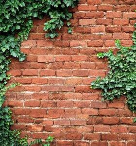 Фотофон детский Стена