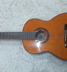 Гитара Valencia CG190