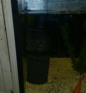 аквариум 600 литров пол года , стекло 12мм , рыбы