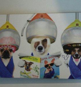 """Картина """"собаки в парикмахерской"""""""