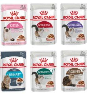 Паучи Royal Canin для кошек (упаковка)