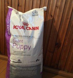 Продам корм для собак Роял Канин