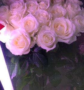 Цветы белые розы спб крупные розы