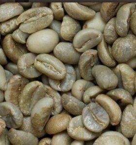 Зеленый кофе паганини
