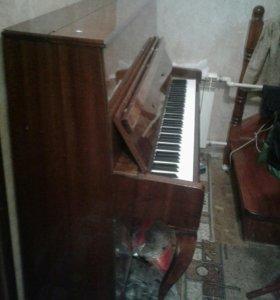 Пианино Тверца в рабочем состояние.