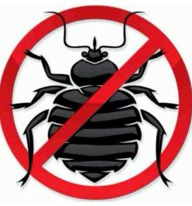 Уничтожение клопов тараканов