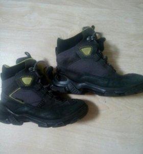Ботинки осень-зима Ecco, размер 31